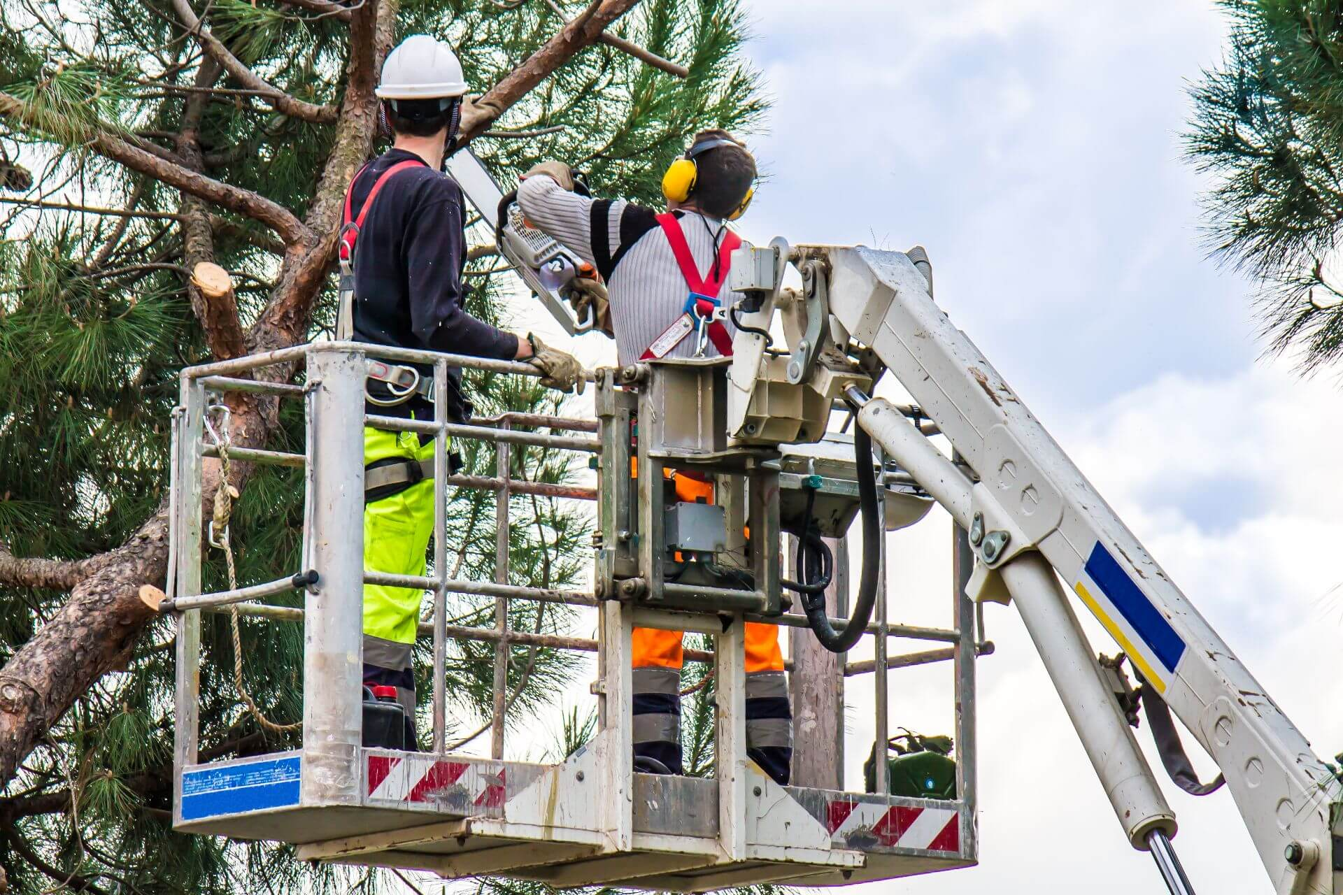 Top 4 Uses of a Cherry Picker